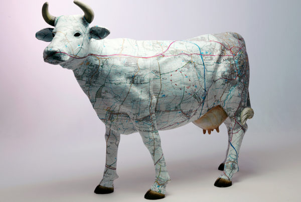 Weslet West Cow printed with OS map